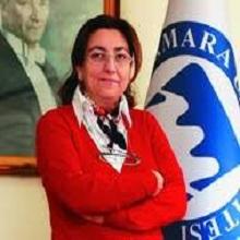Prof. Dr. Erişah Arıcan